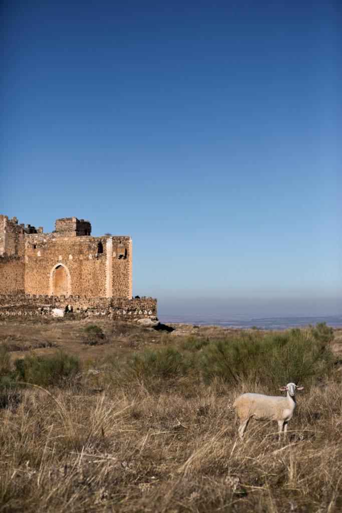 Castillo de Montalbán, de la orden de los Templarios